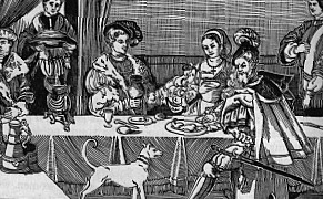 Elizabethan Medicine and Illnesses